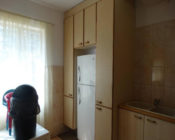 Grey cupboard with white fridge